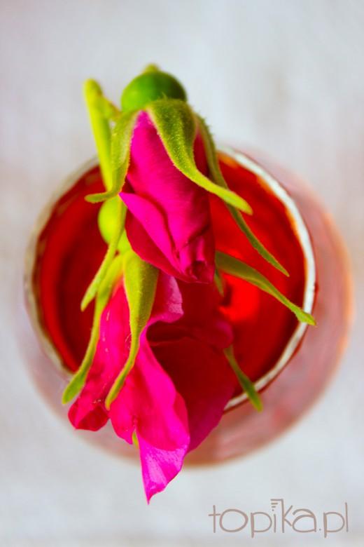 Nalewka mieszana z różą