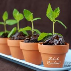babeczki ogrodniczki
