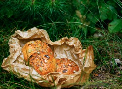 bułki pszenne piknikowe