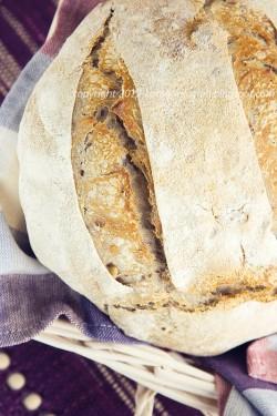 Chleb żurawinowy
