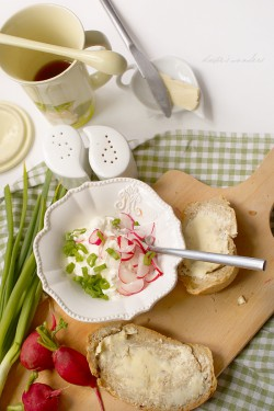 Cream cheese with radishes and spring onion