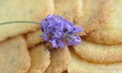 O kruchych ciasteczkach, lemon curd i kawie u Karen Blixen.