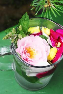 Orzeźwiający ziołowo � kwiatowy napój z melisy, mięty, kwiatów dzikiej róży i dziewannyAlina w Krainie Smaków
