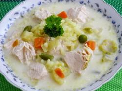 zupa jarzynowa z kurczakiem i ryżem