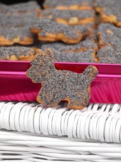 Ciasteczka półkruche z makiem
