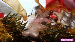 Kruche ciasteczka na choinkę, idealne do zawieszenia na świątecznym drzewku