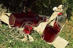Nalewka z czerwonej porzeczki
