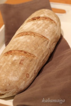 polski chleb na zakwasie