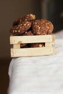 Kakaowe ciastka z płatkami owsianymi i orzeszkami ziemnymiAlina w Krainie Smaków