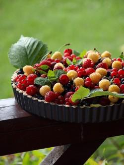 Tarta z kremem cytrynowym i owocami (bez pieczenia)