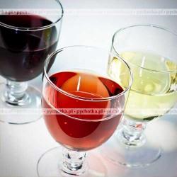 Domowe wino z owoców dzikiej róży – Przepis 1