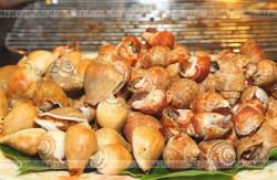 Ślimaki zapiekane w muszlach